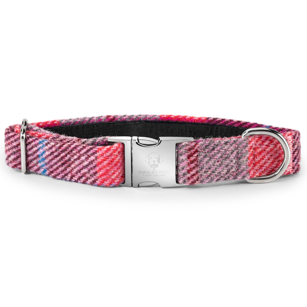 'Marley' Tweed Dog Collar